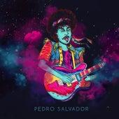 Pedro Salvador de Pedro Salvador