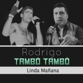 Linda Mañana - En Vivo de Tambó Tambó