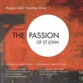 The Passion of St John de Various Artists