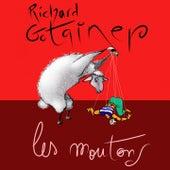 Les moutons de Richard Gotainer