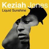 Liquid Sunshine de Keziah Jones