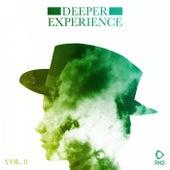 Deeper Experience, Vol. 8 von Various Artists