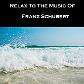 Relax To The Music Of Franz Schubert by Franz Schubert