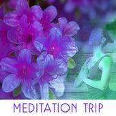 Meditation Trip – Music for Deep Meditation, Yoga, Mantra, Feel Zen at Home by Lullabies for Deep Meditation