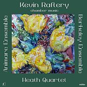 Raftery: Chamber Works de Various Artists