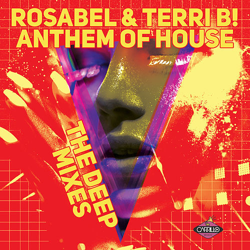 Anthem of house by terri b napster for Anthem house music