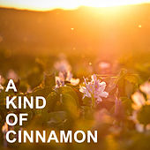 A Kind of Cinnamon de Various Artists