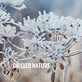 Chilled Nature by Various Artists