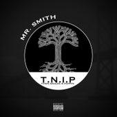T.n.I.P de Mr. Smith