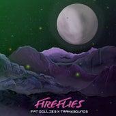 Fireflies (feat. Fat Dollies) von Trakksounds