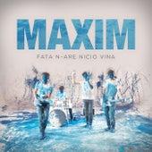 Fata n-are nicio vina by Maxim (1)
