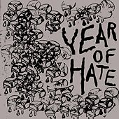 Year of Hate de The Cribs