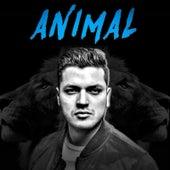 Animal by Tate