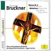 Bruckner: Grosse Messe Nr.3; drei  Motetten by Various Artists