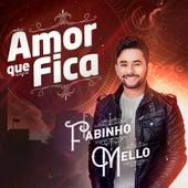 Amor Que Fica by Fabinho Mello
