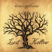 When I Get Home by Lost Hollow