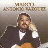 Niñohombre un Trovador en Serenata, Vol. 3 de Marco Antonio Vasquez
