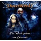 Episode 18: Die Nacht gehört den Skolniks von Dragonbound