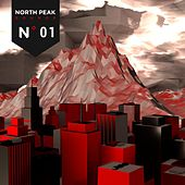 North Peak Sounds de Various Artists