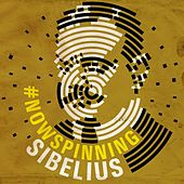 #nowspinning Sibelius by Various Artists
