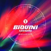 Roda-Gigante by Biquini Cavadão