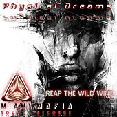 Reap the Wild Wind by Physical Dreams