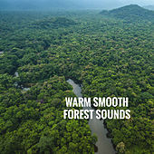 Warm Smooth Forest Sounds by Various Artists