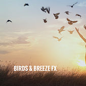 Birds & Breeze FX by Various Artists