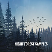 Night Forest Samples by Various Artists