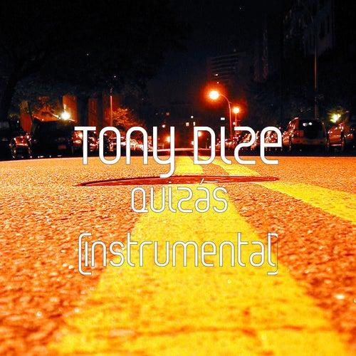 Quizás (Instrumental) de Tony Dize