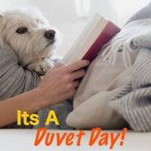 Its A Duvet Day! de Various Artists