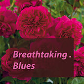 Breathtaking. Blues de Various Artists