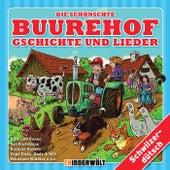 Die schönschte Buurehof Gschichte und Lieder von Various Artists