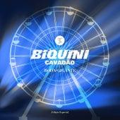 Roda-Gigante (Edição Especial) de Biquini Cavadão