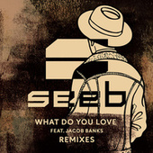 What Do You Love (Feat. Jacob Banks) [Remixes] von seeb
