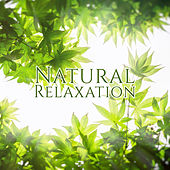 Natural Relaxation – Healing Waves, Mind Calmness, Stress Relief, Inner Peace de Nature Sound Collection
