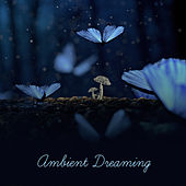 Ambient Dreaming – Soft Sounds for Sleep, Relaxation, New Age Music at Night, Sweet Lullabies, Tranquil Sleep, Harmony, Peaceful Mind, Calm Night de Healing Sounds for Deep Sleep and Relaxation