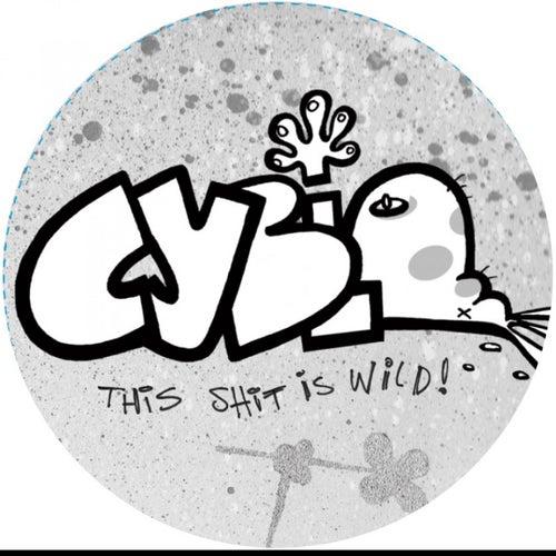 Cyblo 1 by Arttu