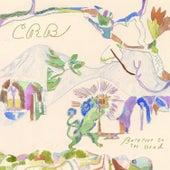 Barefoot in the Head de Chris Robinson