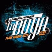 Dj Nelson Presenta: La Buya Vol. 2 von Various