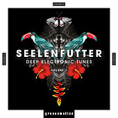 SeelenFutter (Deep Electronic Tunes), Vol. 1 by Various Artists