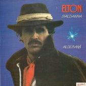 Aldebarã de Elton Saldanha