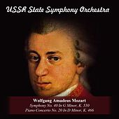 Wolfgang Amadeus Mozart: Symphony No. 40 In G Minor, K. 550 / Piano Concerto No. 20 In D Minor, K. 466 by Various Artists