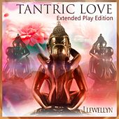 Tantric Love by Llewellyn