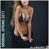 Minimal Spring 2017 by Various Artists