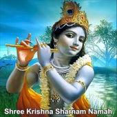 Shree Krishna Sharnam Namah by Suresh Wadkar