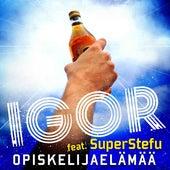 Opiskelijaelämää (feat. SuperStefu) de IGOR