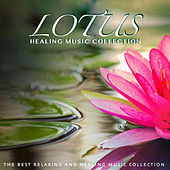 Lotus Healing Music Collection: The Best Relaxing and Healing Music Collection di Various Artists