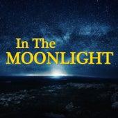 In The Moonlight de Various Artists