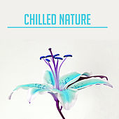 Chilled Nature – Relaxing Music, Peaceful Sounds of Nature, Rest, Relax, Calm Down, Stress Relief, New Age 2017 de Sounds Of Nature
